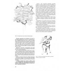 LINDBERGH - Dobrodružství létajícího myšáka – Torben Kuhlmann